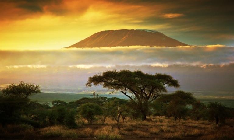 80.1 Tanzania